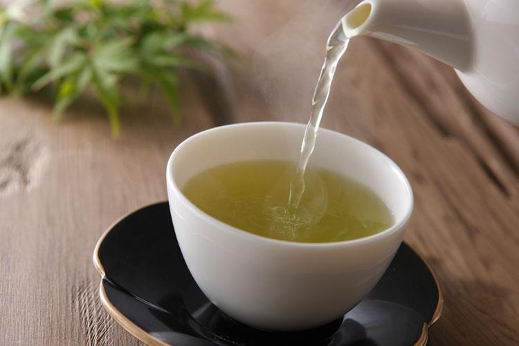 Aspectos funcionais das catequinas do chá verde – Revisão completa.